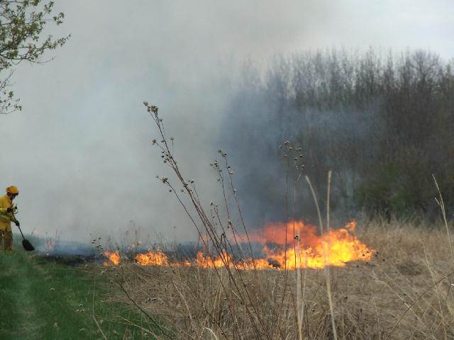 A Good Start To Burning the 40 Acre Field
