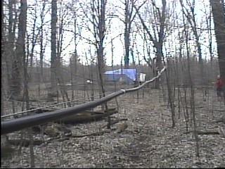 The New Maple Sap Pipeline From the Collecting Stations