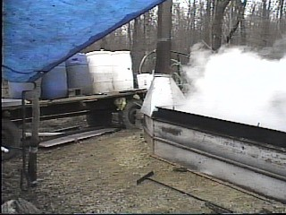 Outside Sap Evaporator with Barrels
