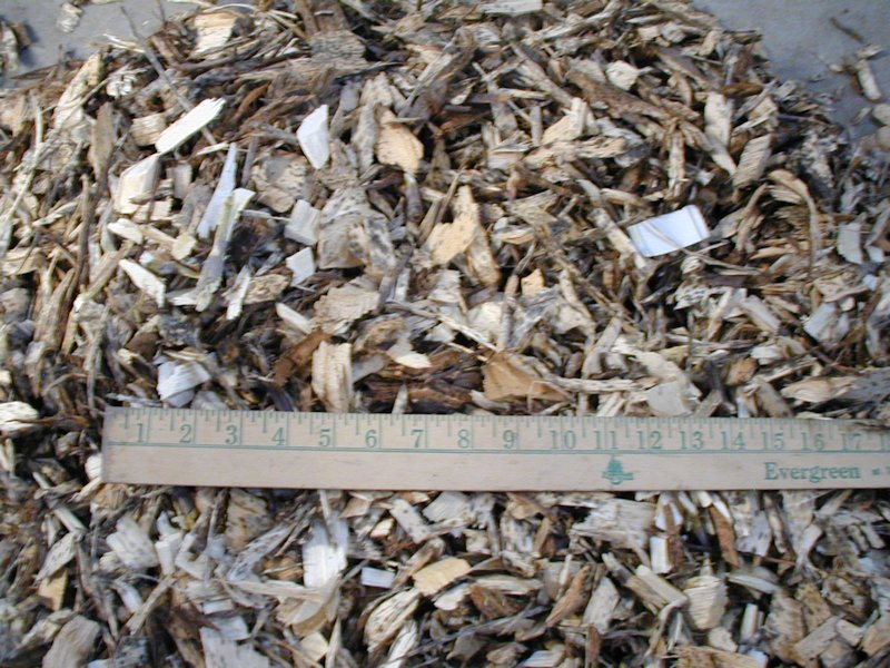 Wood chips for fuel